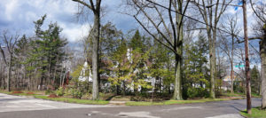 Cleveland Heights Tree Service Company