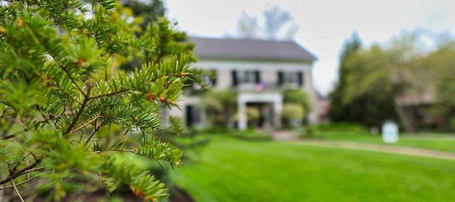 cleveland tree company tree health